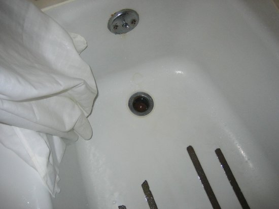 Traveler's Lodge: Shower drain