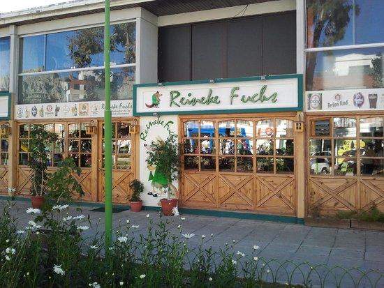 Reineke Fuchs: Store front