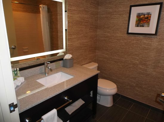 Holiday Inn Express Hotel & Suites Peekskill - Hudson Valley: Bathroom - the lighted mirror is cool.