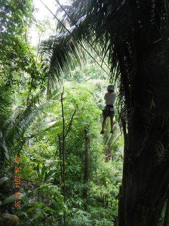 Belize Zipline and Cave Tubing Adventure: more zip lining