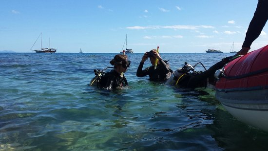Illusions Whitsundays: 1st time Diving! Loved it!