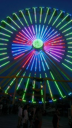 Blue Palms : ferris wheel by hotel