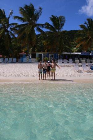 Lion In Da Sun: Adults loved the beach bars!