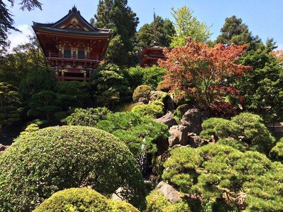 Japanese Tea Garden : Nice