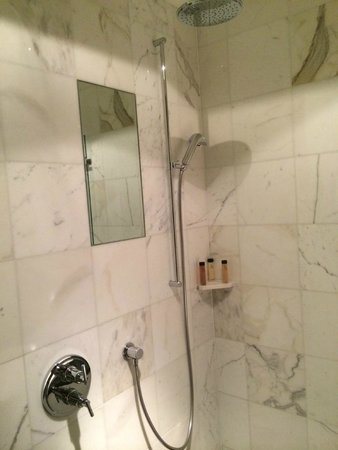Park Hyatt Zurich: Shower with rainfall shower head and hand spray