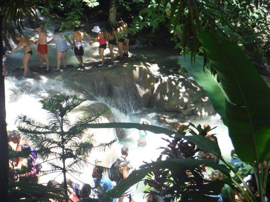Dunn's River Falls and Park : Lots of teams heading up the falls
