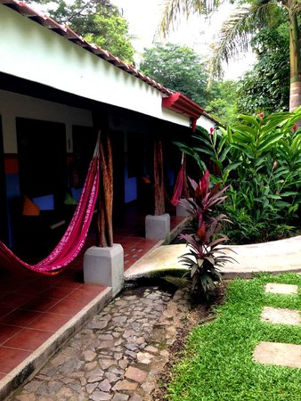 Bahia del Sol Beach Front Boutique Hotel: Hammocks!
