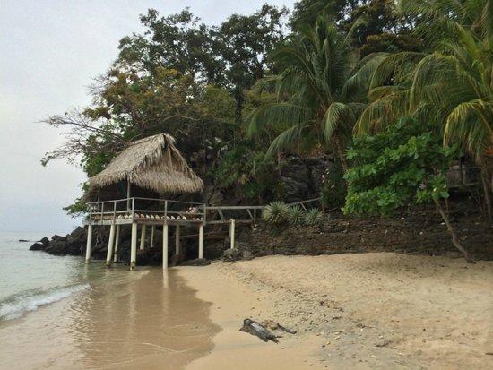 Cayos Cochinos: пляж