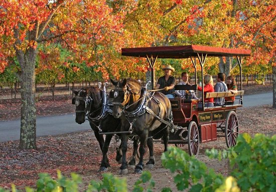 The Wine Carriage in Fall