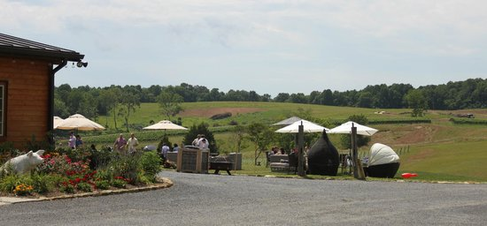 Stone Tower Winery: Outdoor area