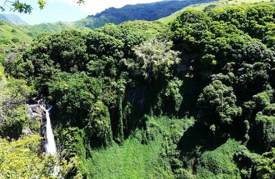 Pipiwai Trail: View