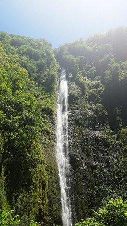 Pipiwai Trail: Waterfall