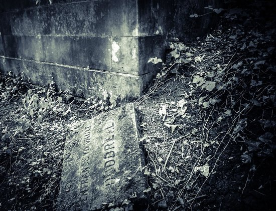 Arnos Vale Cemetery: Interesting open grave