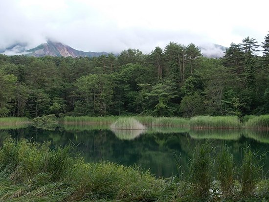 Goshikinuma Lake : コース内の沼