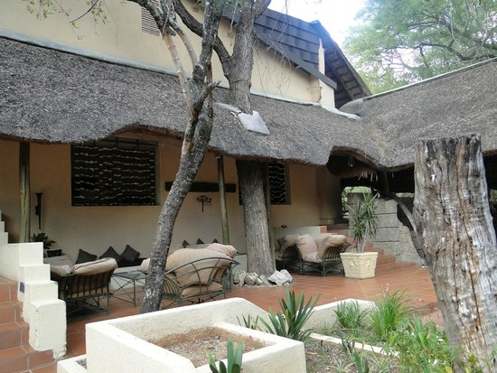 Shiduli Private Game Lodge: area de pileta