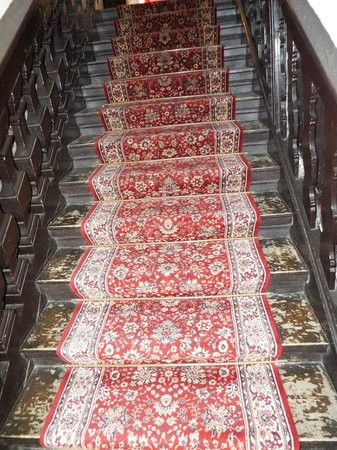 Hotel Patricia : Stairs