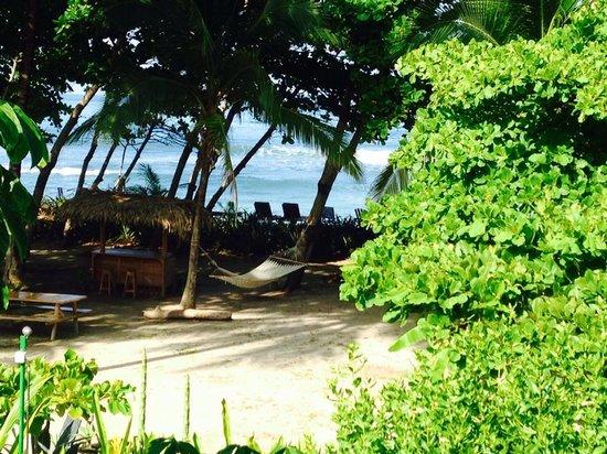 Pranamar Villas and Yoga Retreat: Morning view from 2nd floor deck of Villa 1