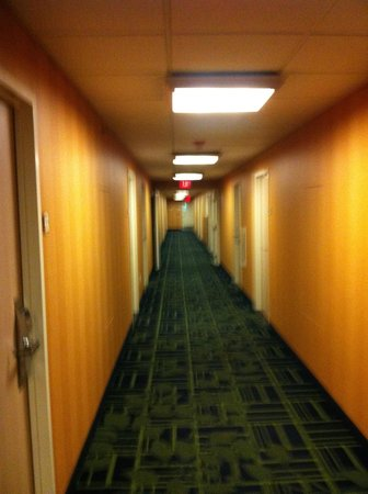 Fairfield Inn Rochester South: hallway 2nd floor