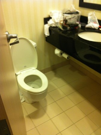 Fairfield Inn Rochester South: bathroom very small