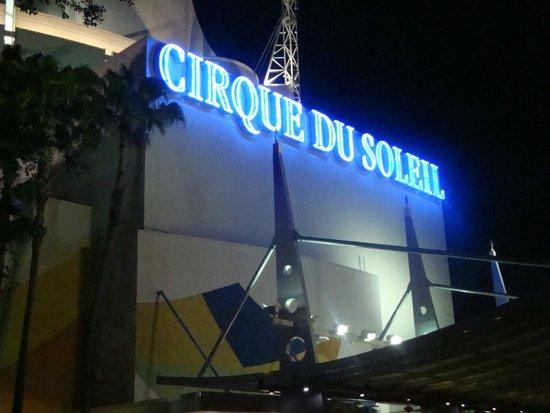 La Nouba - Cirque du Soleil: Entrada