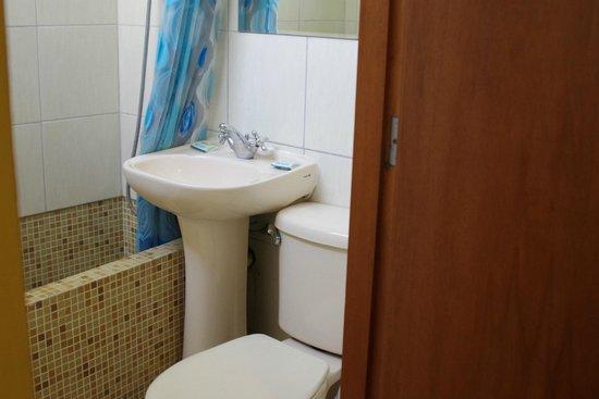 Toyama Pension: バスルーム
