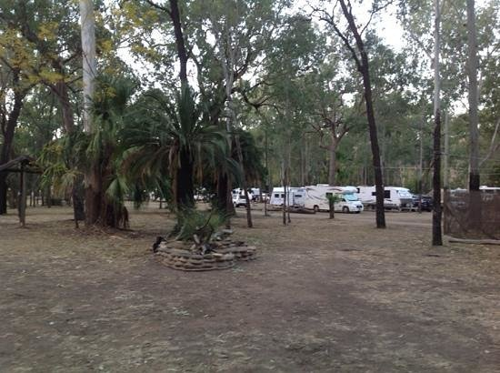 Takarakka Bush Resort: spacious sites