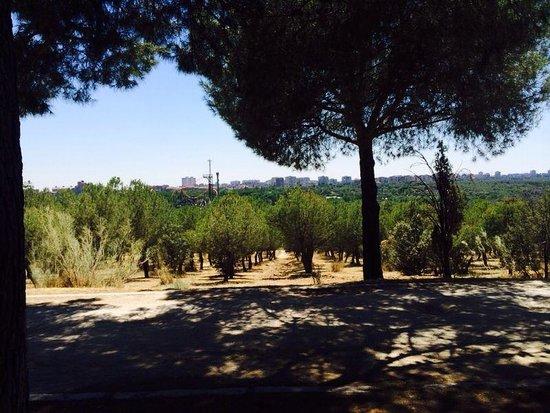 Teleferico: Jardines del Mirador