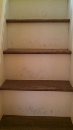 Monticello, IN: Stairs.