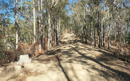 Southern Cross 4WD Tours: 4WD Mt Tamborine