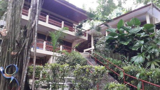 Jungle Beach Hotel at Manuel Antonio: El hotel cuenta principalmente con escaleras, no existen rampas a la vista para discapacitados