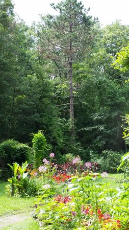 Leaming's Run Gardens: Gorgeous garden.