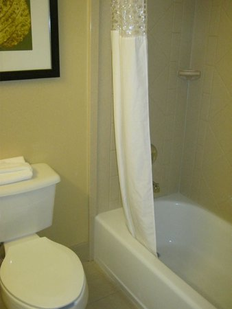 Hampton Inn & Suites Denver Downtown : Shower & toilet