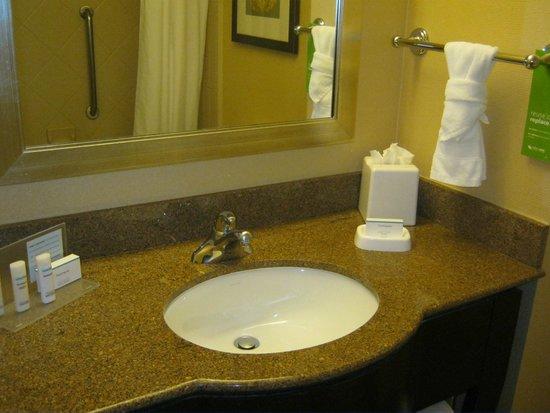Hampton Inn & Suites Denver Downtown : Vanity area