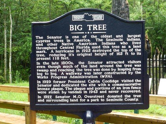 Big Tree Park : Big Tree Sign
