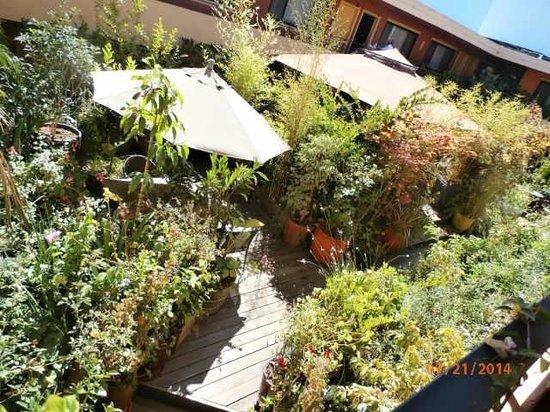 Stanford Terrace Inn: courtyard
