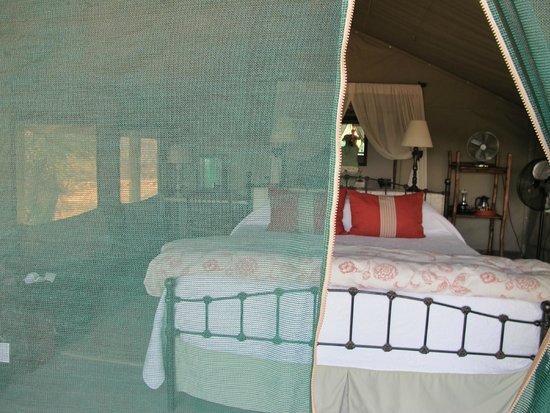 Tanda Tula Safari Camp: our tent