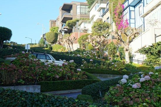 Lombard Street: Linda !