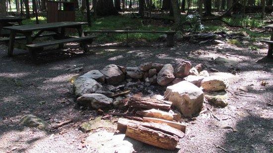 Cacapon Resort State Park : Resort Campfire area