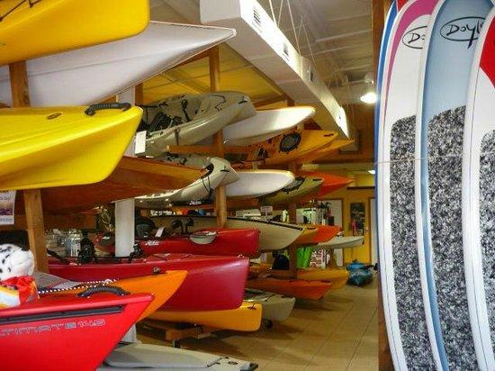 Orchid Island Bikes Amp Kayaks Vero Beach 2019 All You
