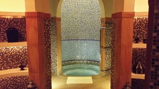 Palace Downtown : Jacuzzi at the spa