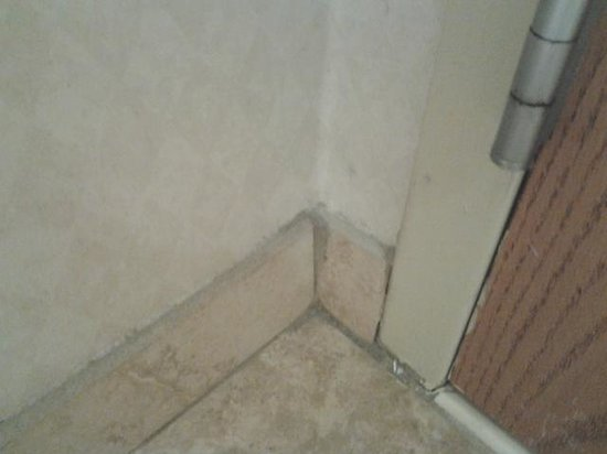 Hampton Inn Grand Rapids-North: See all that dust in the corner? It was like that all the way around the bathroom.