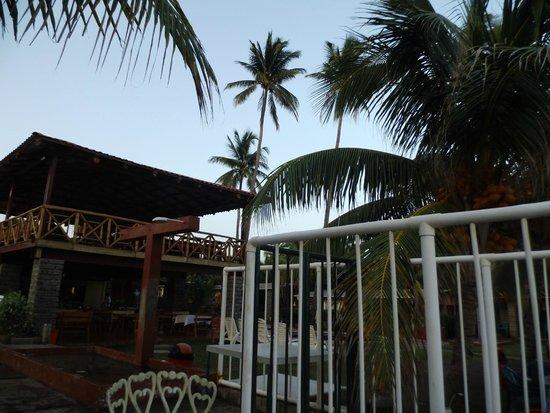 Punta Roca Surf Resort: Terrazas con palmeras