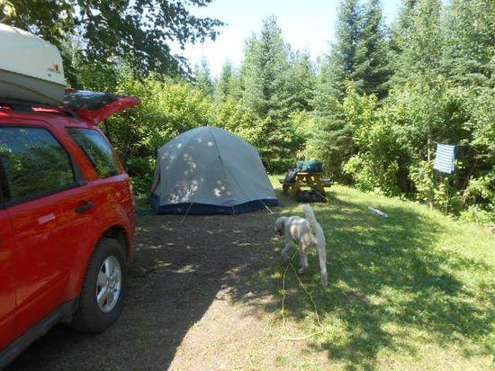 Gunflint Pines Resort & Campgrounds: Upper campsite area