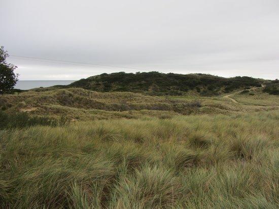 Barnbougle Lost Farm: Ocean view in distance