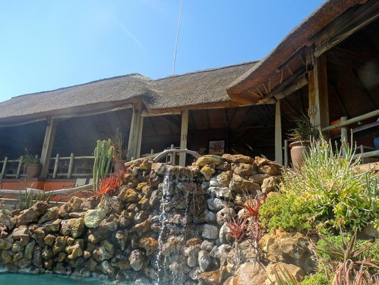 Ngoma Safari Lodge: Below the dining area, a waterfall flows into a small pool area