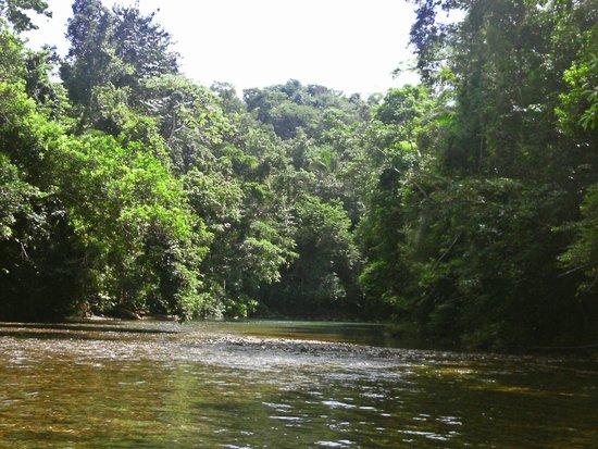 Chukka Caribbean Adventures in Belize: River