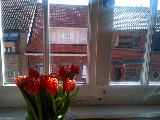 Bed and Breakfast Het Consulaat: Tulips in the kitchen