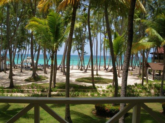 Vista Sol Punta Cana : Plage de l'hôtel