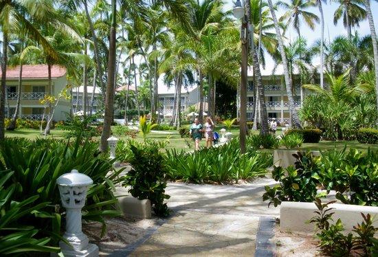 Vista Sol Punta Cana: Complexe hôtelier