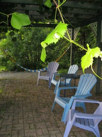 B&B Vert Le Mont: Relax under the grape arbor